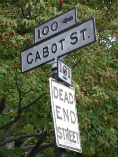 Cabot St at Singletree Rd Sign